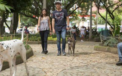 En el barrio El Dorado, de Envigado, se abrirá un parque canino