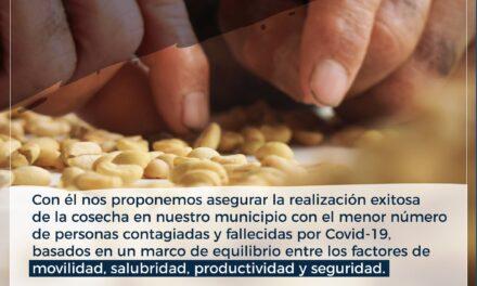 Salgar lanza plan cosecha cafetera 2020
