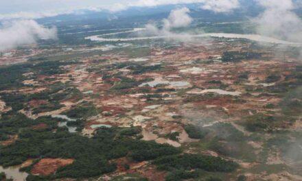 $47.500 millones en proyectos agrícolas para el Bajo Cauca